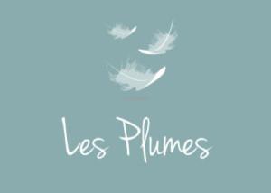Logo Les plumes Fd bleu